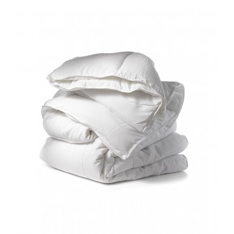 Single Hema Goose Feather & Down Duvet (Summer Winter)